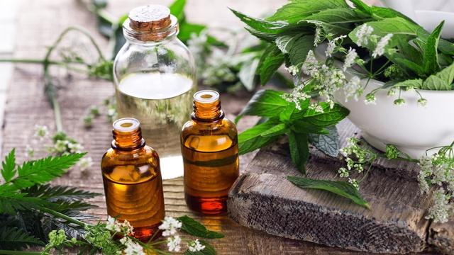 L'essentiel de l'aromathérapie scientifique - Ulule