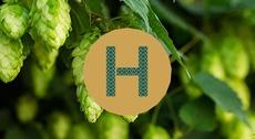 HOPEN  -  TERRE DE HOUBLON