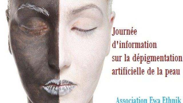 Journée d'information sur la dépigmentation artificielle de ...
