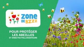 Créons 10000 Zones de BZZZ