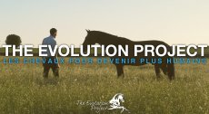 The Evolution Project