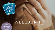 WELLDUNN — STACKING RINGS
