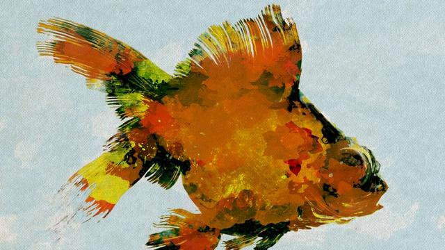 Nouvel album le syndrome du poisson rouge ulule for Achat poisson rouge 92