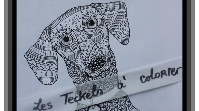 Les Teckels A Colorier Chiens A Colorier Ulule